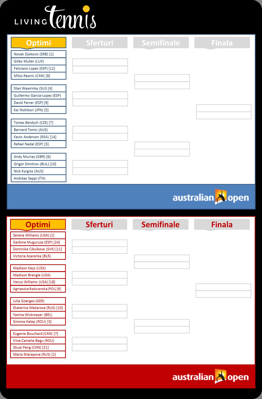 Optimi de finala Australian Open 2015